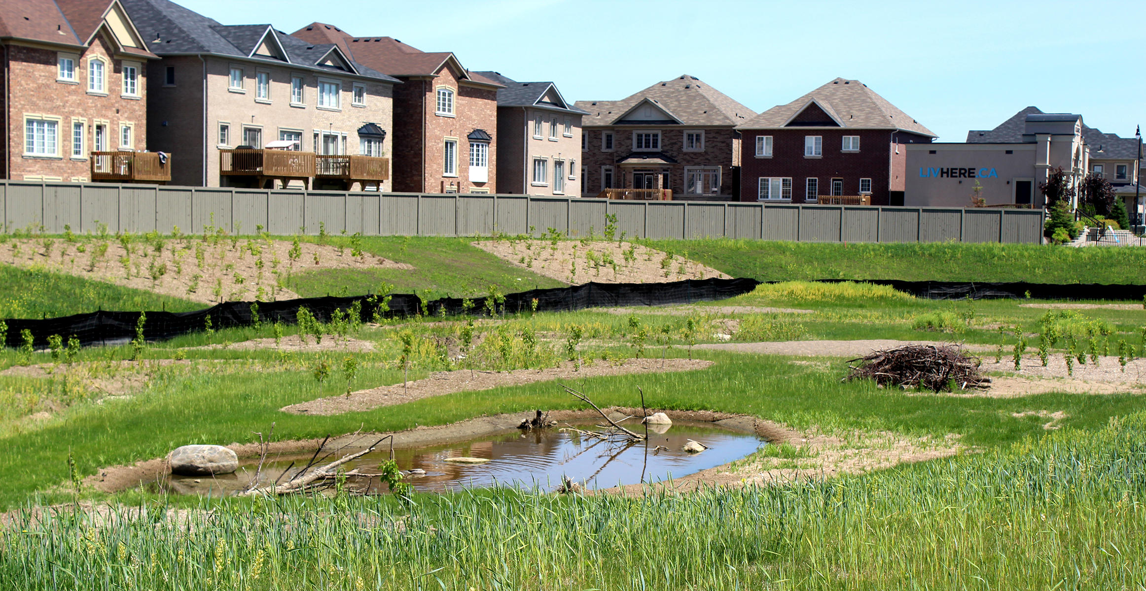 Ecoland Inc. create natural landscapes in Ontario's sprawling neighborhoods